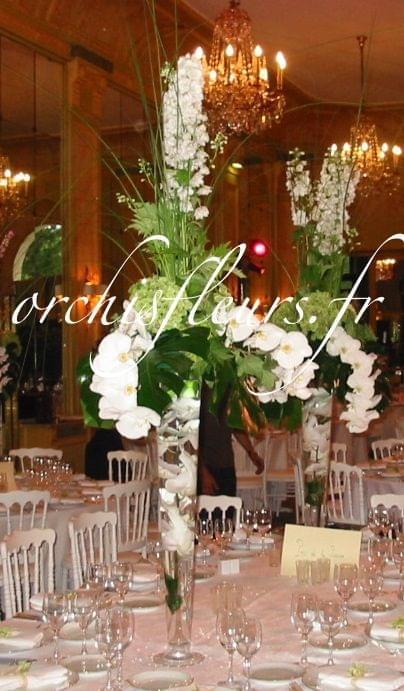 Décoration de salle Nos créations  Fleuriste ORCHIS fleuriste Bois d'Arcy 78390  # Fleuriste Bois D Arcy